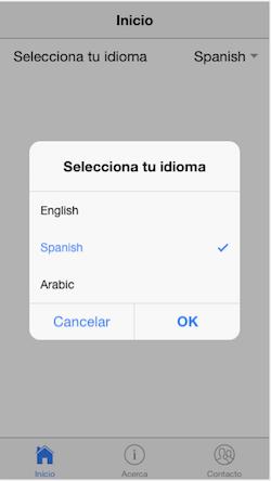 Translate ionic app